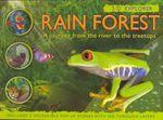 RainForest3D