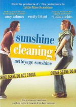 SunshineCleaning