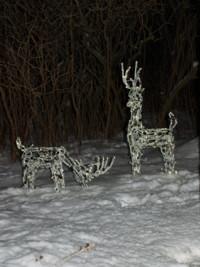 DeerLights